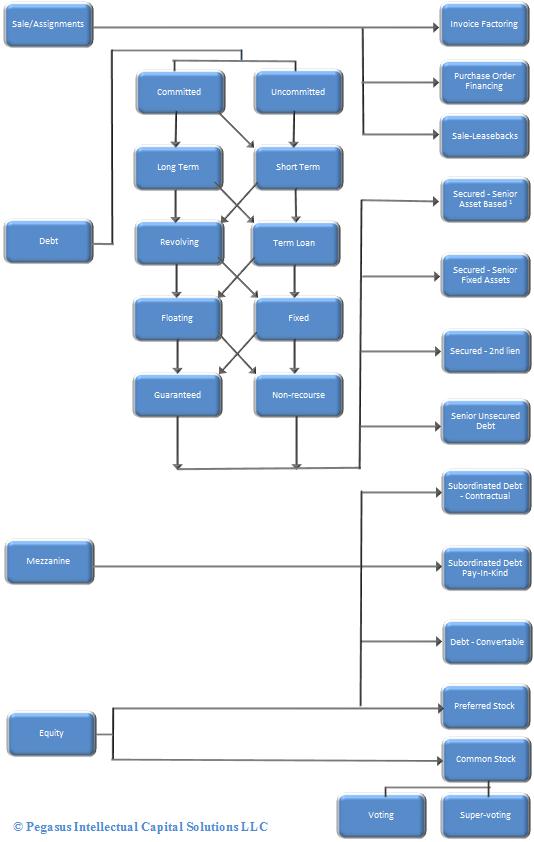 Schematic of capital raising options