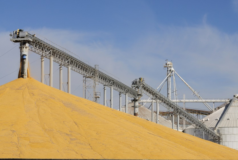 Grain elevator with mound of grain