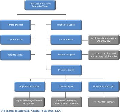 Intellectual Capital Audit Outline of Enterprise Value