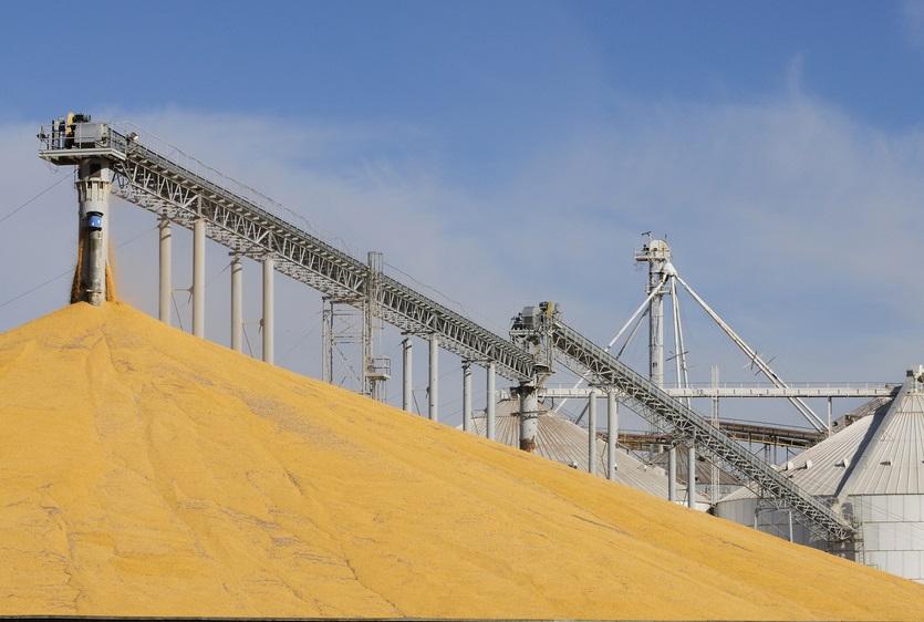 Grain elevator with mound of grain