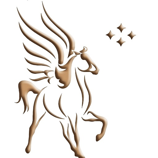PegasusICS icon