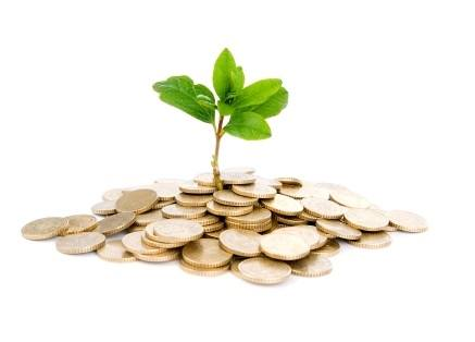 Plant growing in coins: Metaphor for startup financing